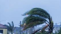 Allstate Insurance Company- Hurricanes Katrina/Rita Response SE U.S.